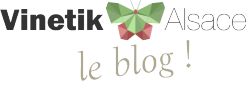 Blog Vinetik Alsace