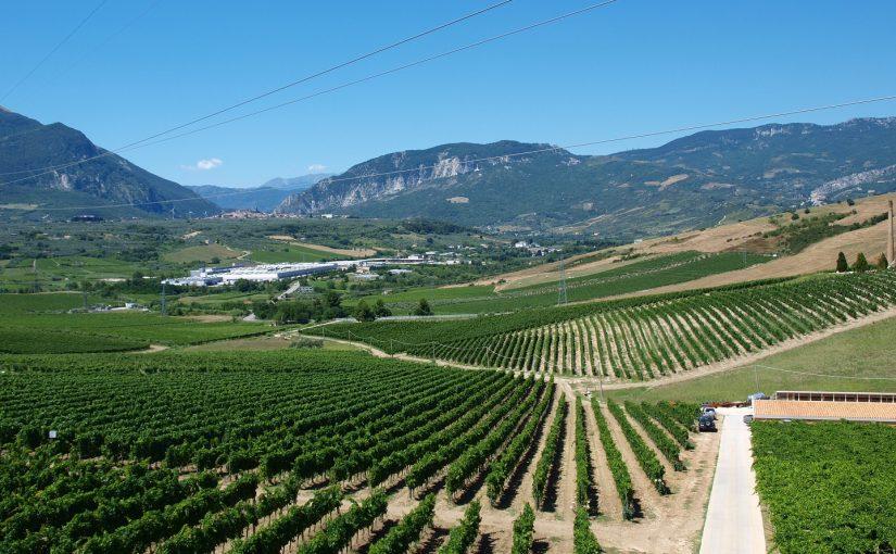 Suite du séjour en Italie : visite du domaine Zaccagnini